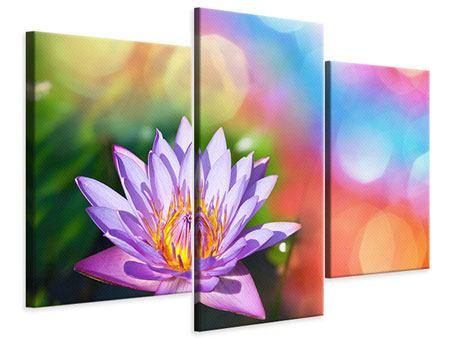 Leinwandbild 3-teilig modern Colored Lotus