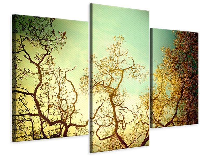 Leinwandbild 3-teilig modern Bäume im Herbst