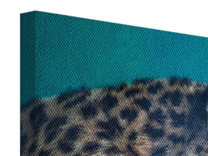 Leinwandbild 3-teilig modern Leopard XL