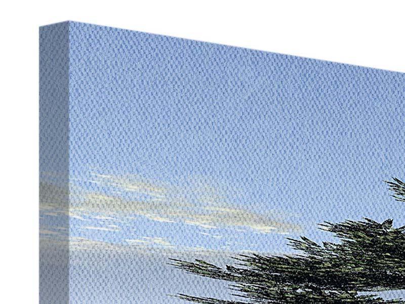 Leinwandbild 3-teilig modern Naturfaszination