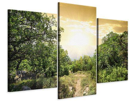 Leinwandbild 3-teilig modern Am Ende des Waldes