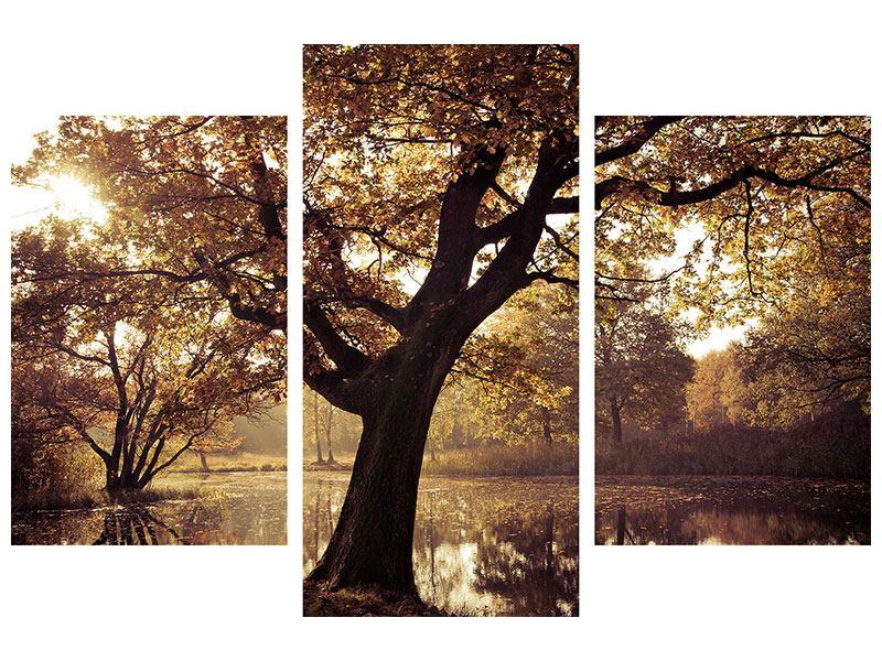 Leinwandbild 3-teilig modern Landschaftspark