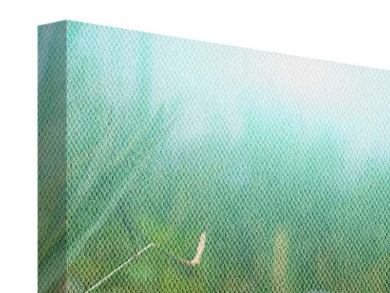 Leinwandbild 3-teilig modern Im Seerosenteich