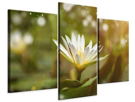 Leinwandbild 3-teilig modern Lilien-Lichtspiel