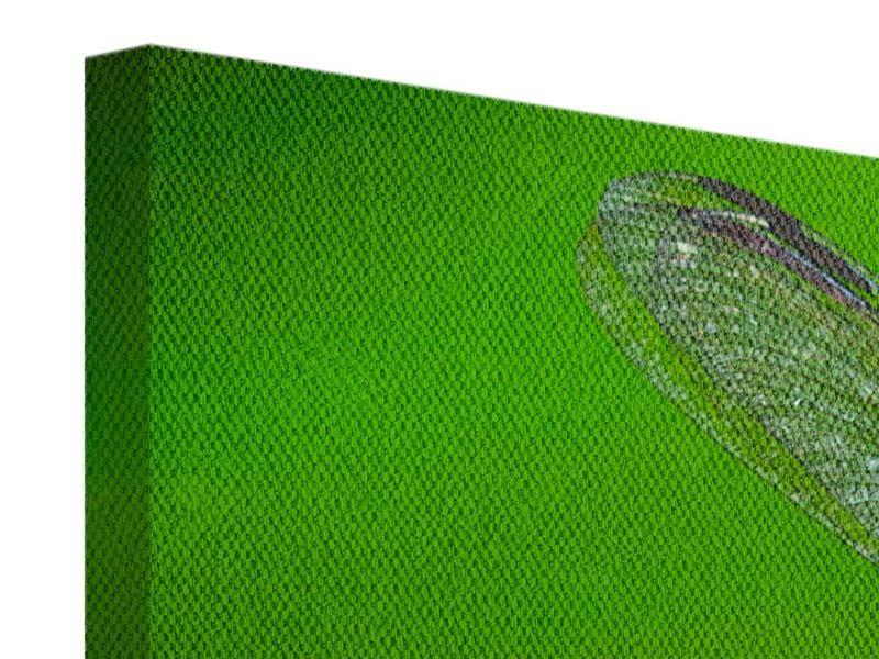 Leinwandbild 3-teilig modern Die Libelle