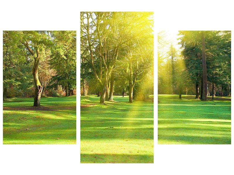 Leinwandbild 3-teilig modern Im Park