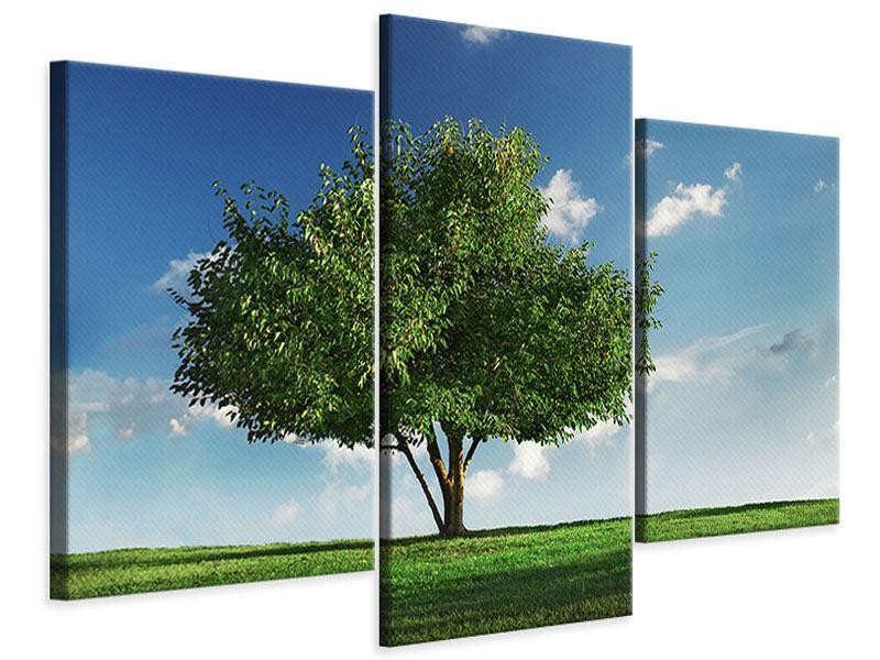 Leinwandbild 3-teilig modern Baum im Grün