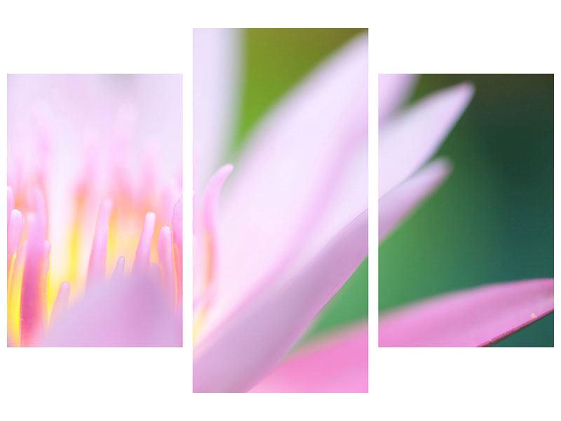 Leinwandbild 3-teilig modern XXL-Lilie