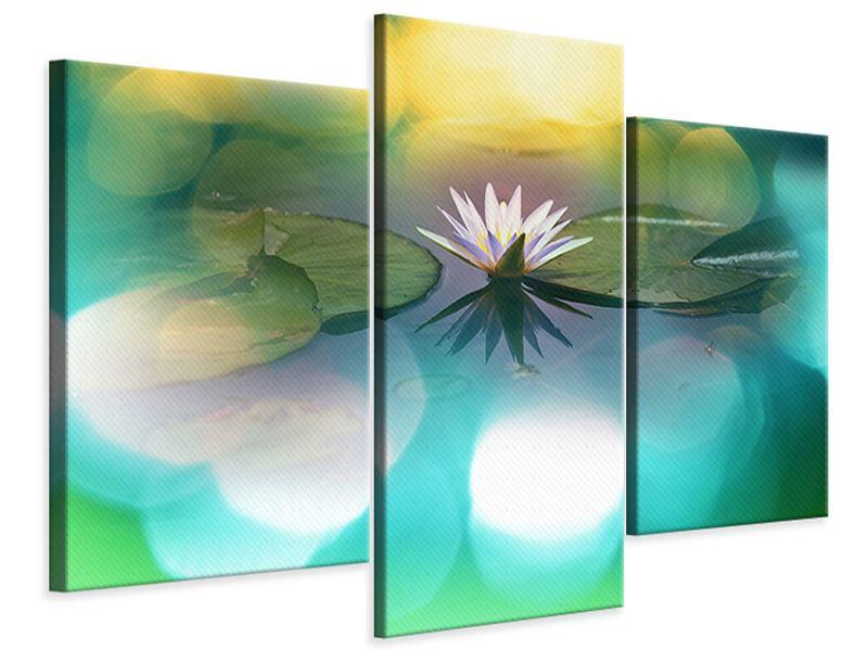 Leinwandbild 3-teilig modern Lotus-Spiegelung