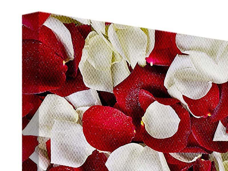 Leinwandbild 3-teilig modern Rosenblätter