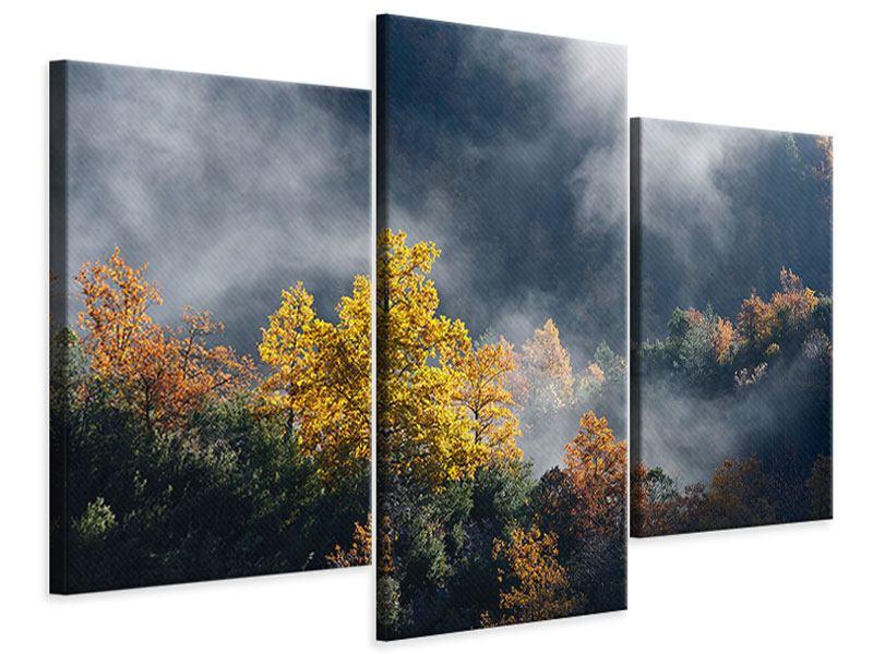 Leinwandbild 3-teilig modern Mondscheinwald