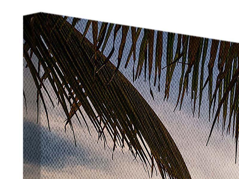 Leinwandbild 3-teilig modern Strandpalme