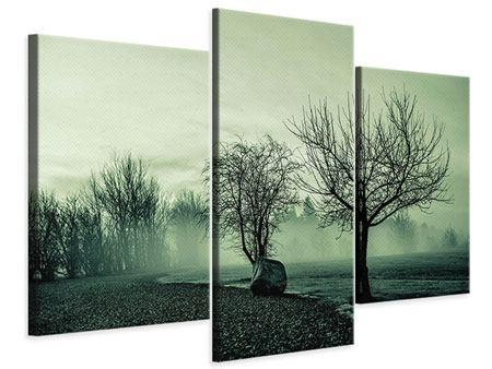 Leinwandbild 3-teilig modern Der Auwald im Nebel