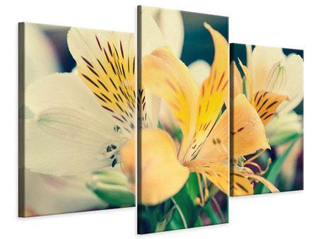 Leinwandbild 3-teilig modern Tigerlilien
