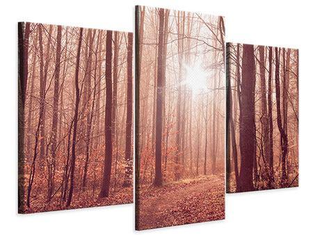 Leinwandbild 3-teilig modern Sonnenuntergang im Herbstwald