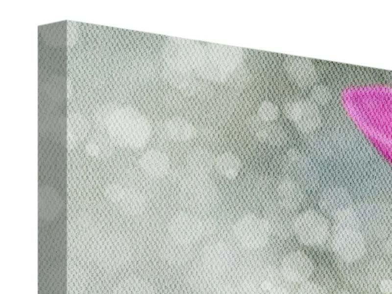 Leinwandbild 3-teilig modern Libelle auf dem Seerosenblatt