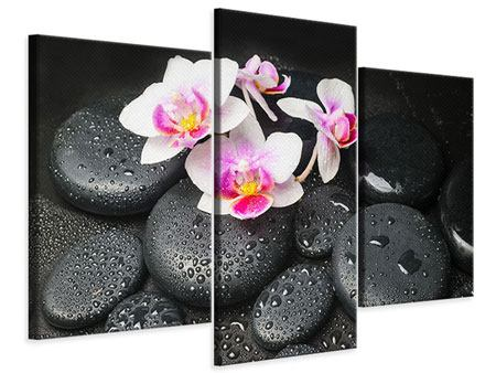 Leinwandbild 3-teilig modern Feng-Shui-Orchidee Zen