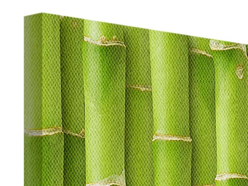Leinwandbild 3-teilig modern Bambuswand