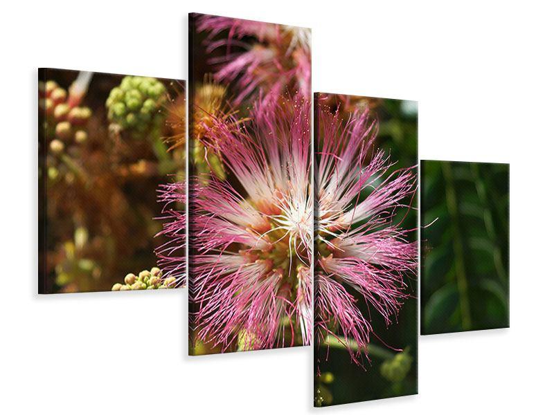 Leinwandbild 4-teilig modern Die Regenbaumblüte