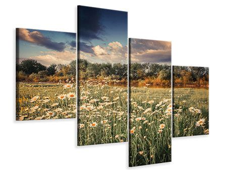 Leinwandbild 4-teilig modern Die Wiesenmargerite am Fluss