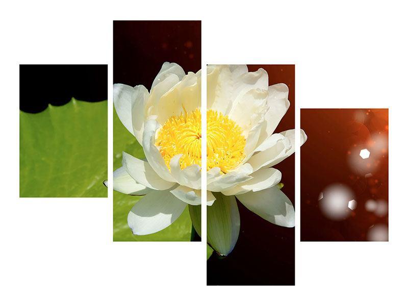 Leinwandbild 4-teilig modern Seerose im Mondlicht