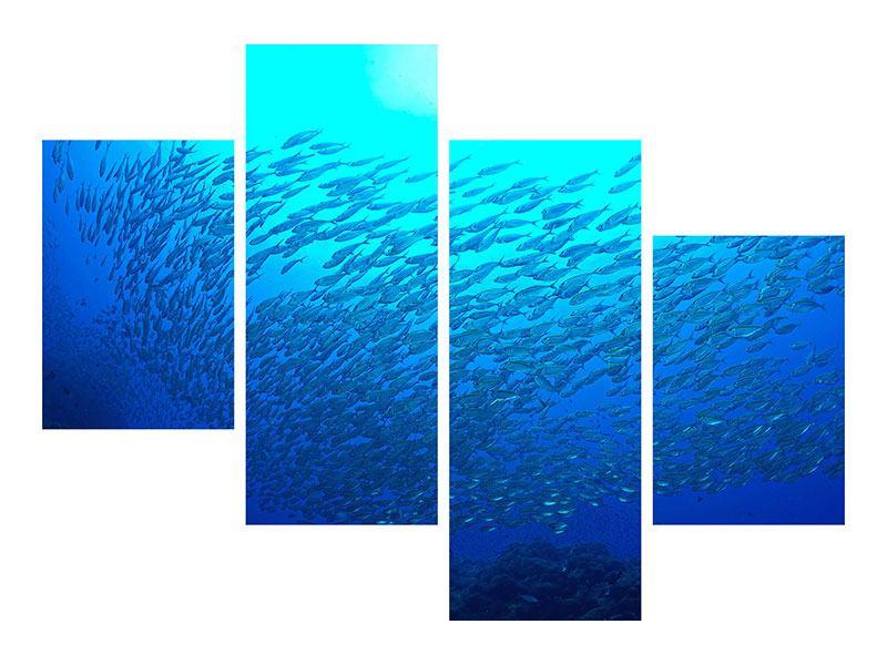 Leinwandbild 4-teilig modern Fischwelt