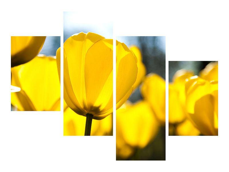 Leinwandbild 4-teilig modern Gelbe Tulpen in XXL