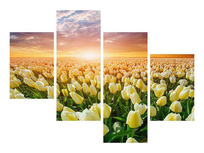 Leinwandbild 4-teilig modern Sonnenaufgang bei den Tulpen
