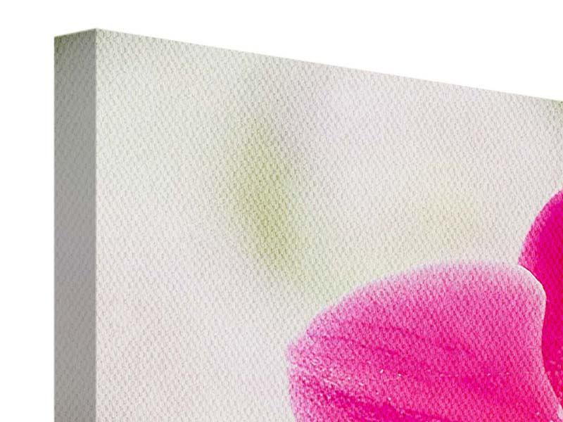 Leinwandbild 4-teilig modern Perspektivische Orchideen