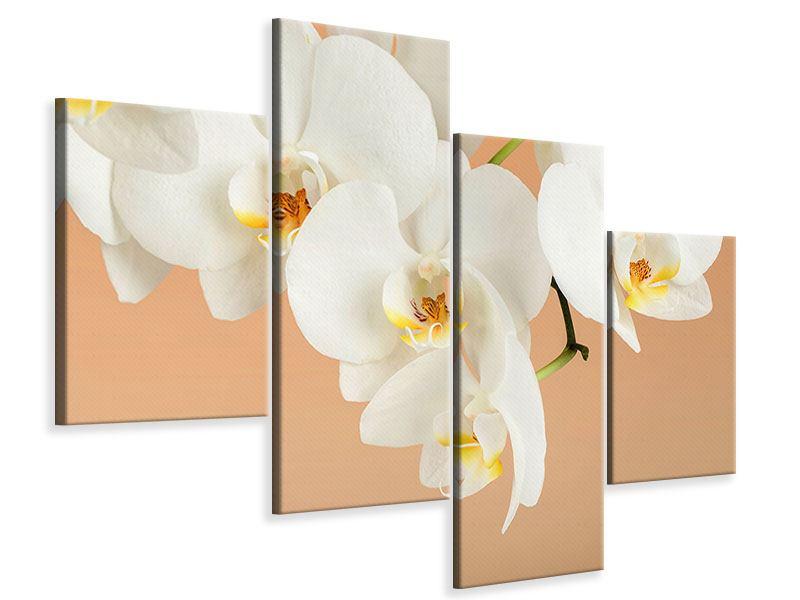 Leinwandbild 4-teilig modern Weisse Orchideenblüten
