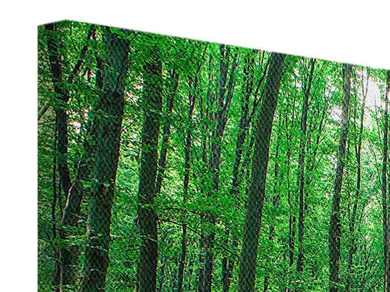 Leinwandbild 4-teilig modern Tannenwald
