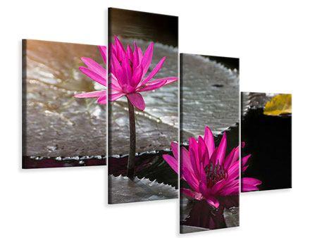 Leinwandbild 4-teilig modern Seerosen im Morgentau
