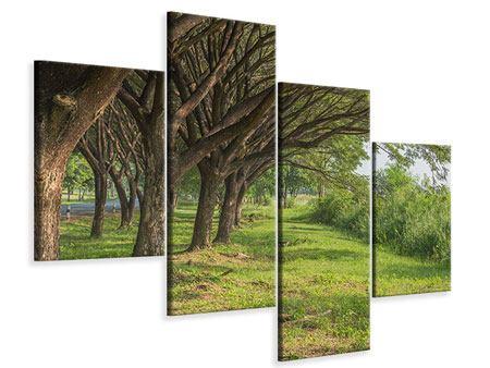 Leinwandbild 4-teilig modern Alter Baumbestand