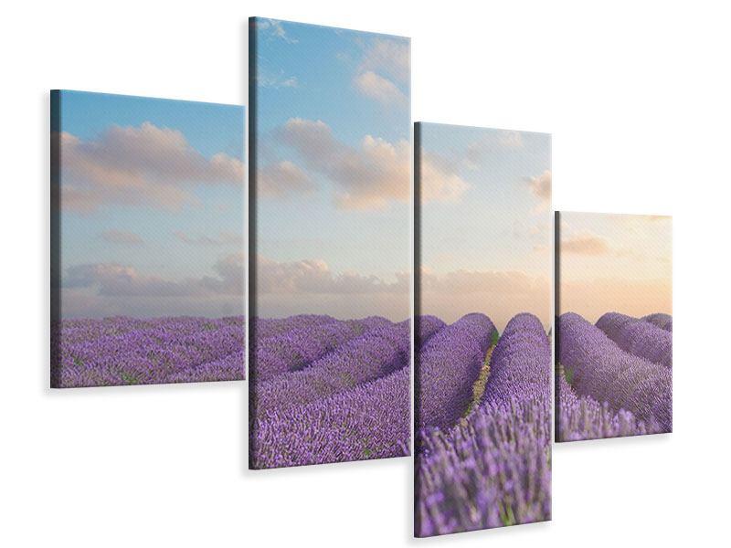 Leinwandbild 4-teilig modern Das blühende Lavendelfeld