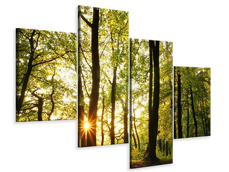 Leinwandbild 4-teilig modern Sonnenuntergang zwischen den Bäumen