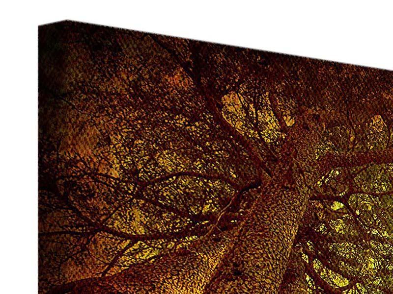 Leinwandbild 4-teilig modern Cedar Baum