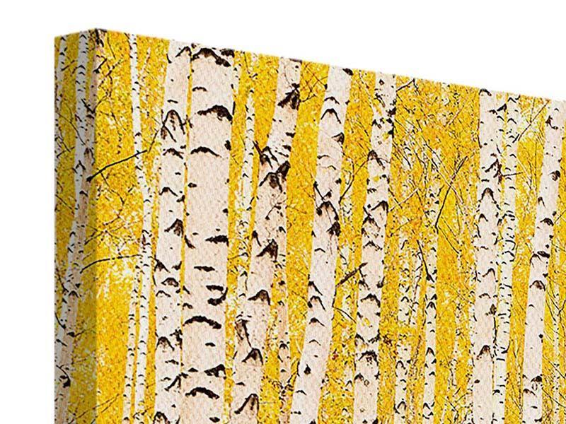 Leinwandbild 4-teilig modern Der Birkenwald im Herbst