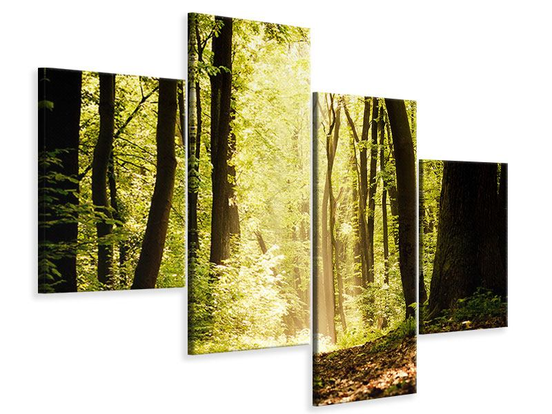 Leinwandbild 4-teilig modern Sonnenaufgang im Wald