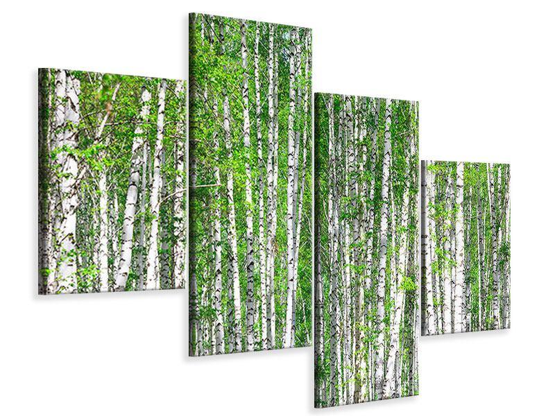 Leinwandbild 4-teilig modern Der Birkenwald