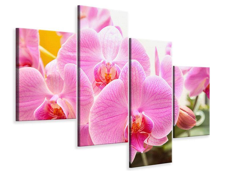Leinwandbild 4-teilig modern Königliche Orchideen