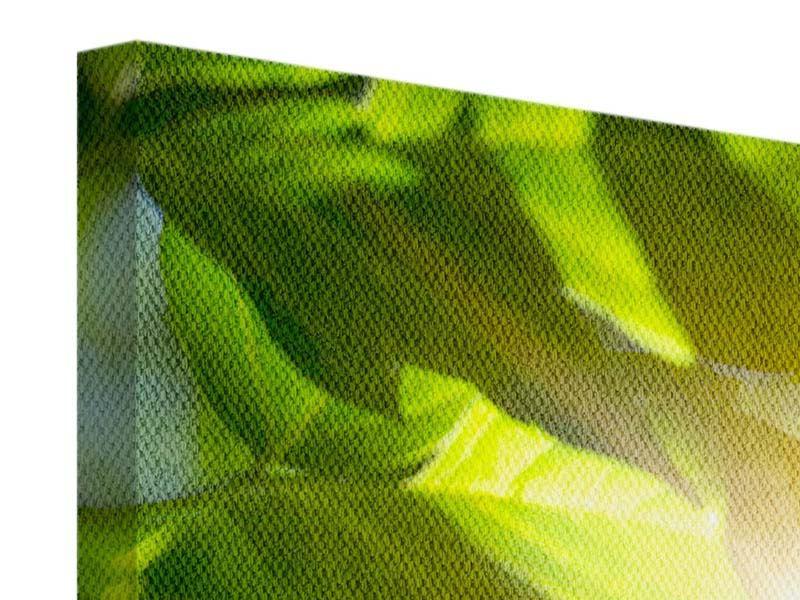 Leinwandbild 4-teilig modern Es grünt so grün