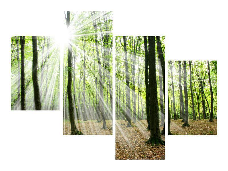 Leinwandbild 4-teilig modern Magisches Licht in den Bäumen