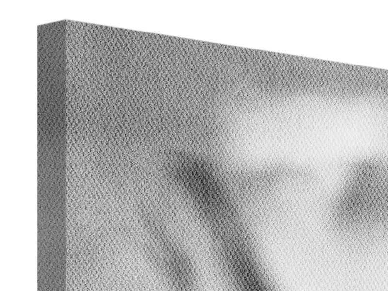 Leinwandbild 4-teilig modern Makro Lilienblatt