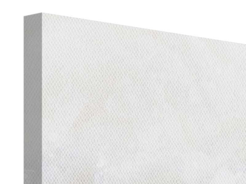 Leinwandbild 4-teilig modern Weisse Rosen im Morgentau