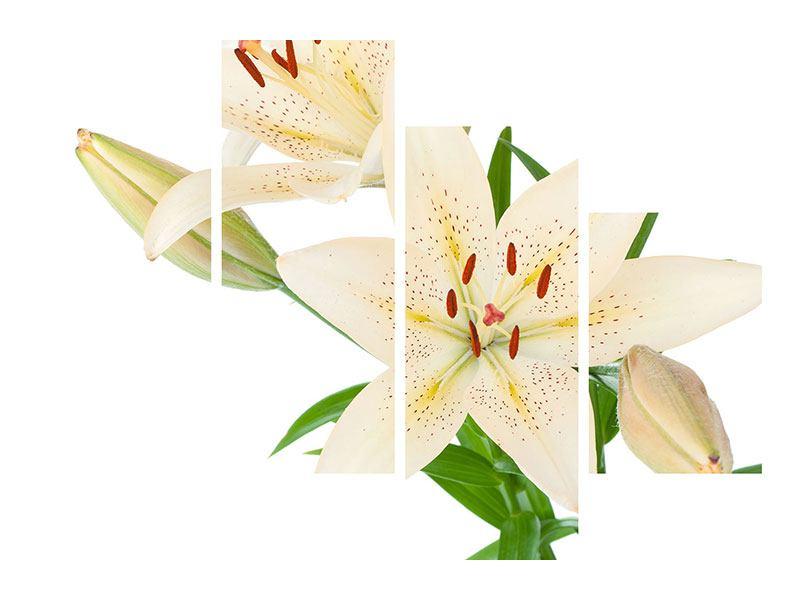Leinwandbild 4-teilig modern Weisser Lilienstrauch