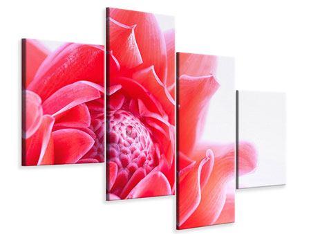 Leinwandbild 4-teilig modern Etlingera XXL