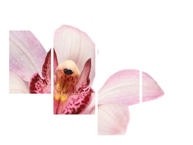 Leinwandbild 4-teilig modern Orchideenblüte XXL