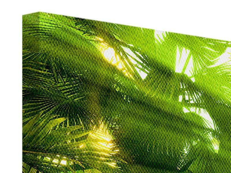 Leinwandbild 4-teilig modern Sonnenaufgang im Regenwald
