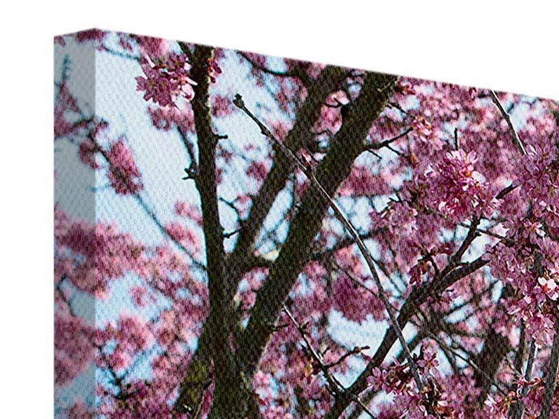 Leinwandbild 4-teilig modern Japanische Blütenkirsche