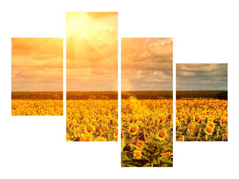 Leinwandbild 4-teilig modern Goldenes Licht für Sonnenblumen